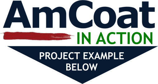 AmCoat in Action Project Example Link